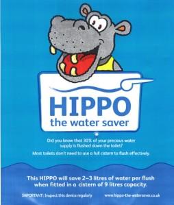 hippo 9
